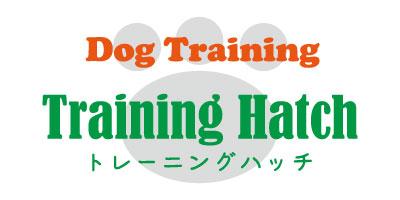 トレーニングハッチ
